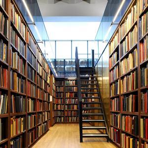 Библиотеки Большого Села