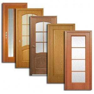Двери, дверные блоки Большого Села