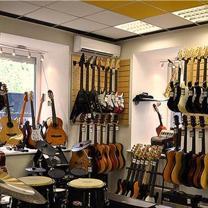 Музыкальные магазины Большого Села
